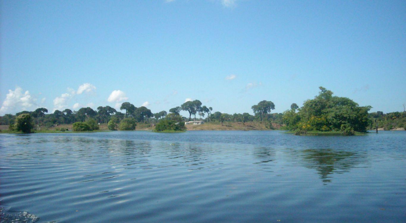 Chamados para o Amazonas